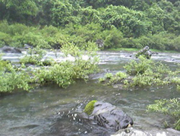 高知県 川釣りポイント 梼原川(四万十川水系)