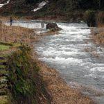 鳥取県 河内川