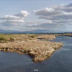 熊本県 菊池川(中流域)
