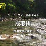 秋田県 成瀬川