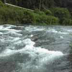 高知県 北川川(四万十川支流)