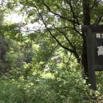 福島県 高瀬川