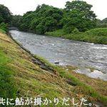 岩手県 稗貫川(岳川)