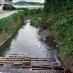 神奈川県 不動川(大磯プリンスホテル付近)